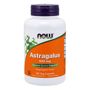 Astragalus 500mg - Now Foods